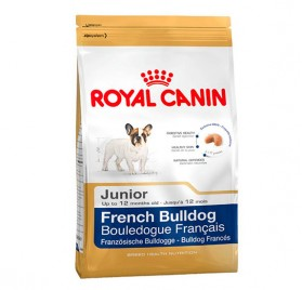 ROYAL CANIN Bulldog Francés Junior pienso para cachorros