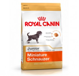 ROYAL CANIN Schnauzer Mini Junior pienso para cachorros